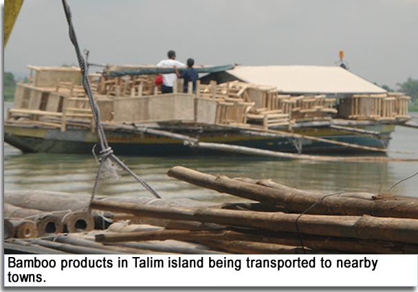 Bamboo product in Talim island being tranported to nearby towns