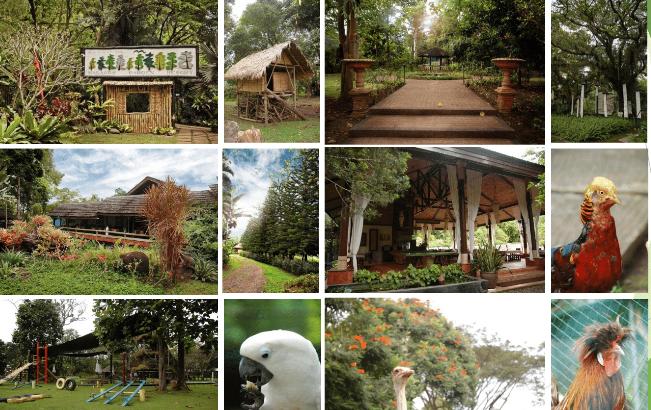 PHOTO Malagos Garden REsort