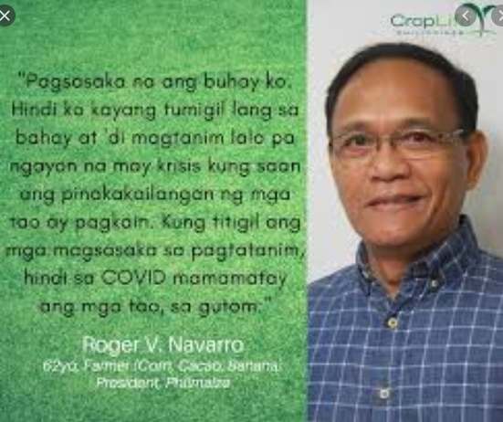 Wheat imports feared to cause downward spiral on the already depressed corn price of P12 per kilo; govt urged to invest in storage, buy farmers'produce