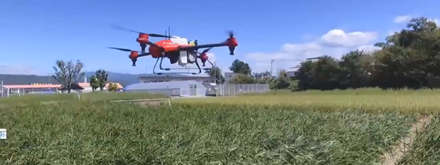 AI-driven drone revolutionizes PH rice farming; Bayer demonstration in Paniqui, Tarlaccompleted