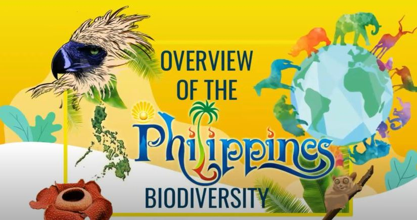 Private sector support for PPP sought to fund P24B yearly biodiversity strategy program up to2028