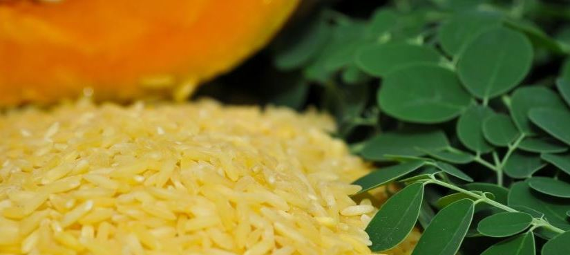 First-of-its-kind Golden Rice to save 190 million children from risks of Vitamin A deficiency, respiratory diseases, diarrhea, measles, nightblindness